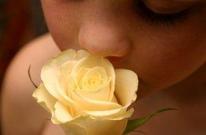 Olores, aromas y perfumes